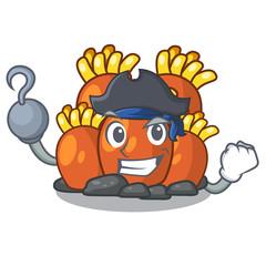 Pirate orange coral reef toys shape cartoon