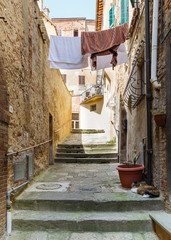 Picturesque narrow street in ancient medieval hills town of Montepulciano, linen hanging between the old houses, fat cat lying on the stones. Vertical picture. Tuscany, Italy.
