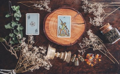 7 of wands tarot card on a nature display