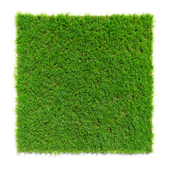 square shaped green grass lawn, 3d render