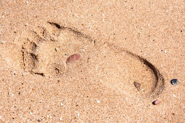 Footprints standing bare in the sand