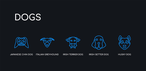 5 outline stroke blue husky dog, irish setter dog, irish terrier dog, italian greyhound japanese chin icons from dogs collection on black background. line editable linear thin icons.