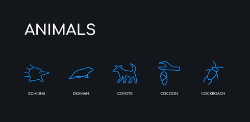 5 outline stroke blue cockroach, cocoon, coyote, desman, echidna icons from animals collection on black background. line editable linear thin icons.