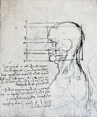 Proportions of head with notes  by Leonardo Da Vinci in a vintage book Leonard de Vinci, Eugene Muntz, 1899, Paris