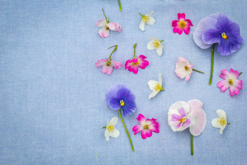 Beautiful pansies and roses on the farbic background