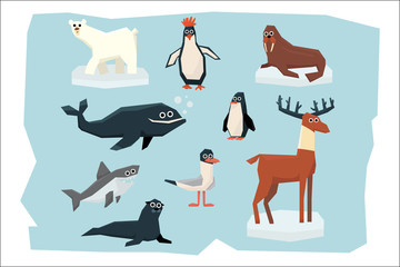 Cartoon collection of different Arctic and Antarctic animals. Polar bear, penguin, albatross, reindeer, seal, walrus, shark and whale. Colorful flat vector design