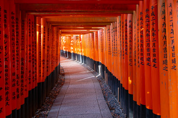 Foto op Aluminium Japan Red torii gates in Fushimi Inari shrine in Kyoto Japan without people