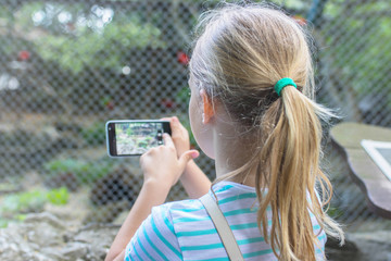 Young girl taking a photo of animals and beautiful nature in zoo by cell phone