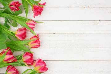 Side border of pink tulip flowers against a white wood background. Copy space.