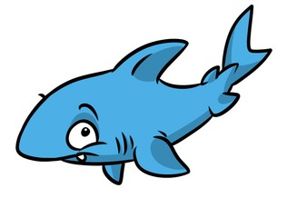 Shark fish animal character cartoon illustration isolated image