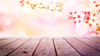 Spring flowers background with copy space for your text