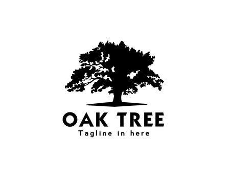 oak tree logo design inspiration