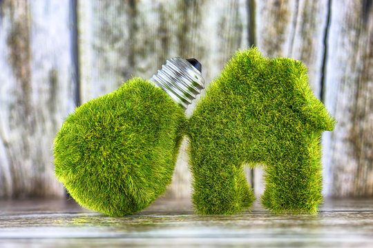 Green eco light bulb and eco house icon concept with grass and wooden background. Renewable energy. Electricity prices, energy saving in the household.