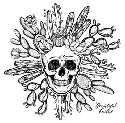Vector illustration. Beautiful cactus with a skull. Handmade. Tattoos, prints on T-shirts, postcard for you, background white