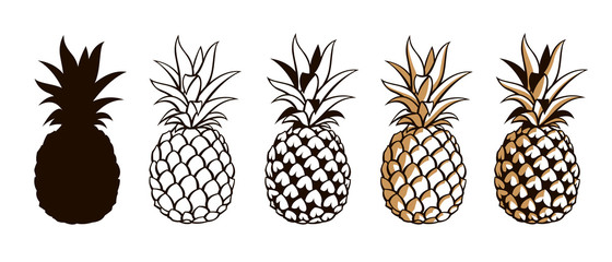 collection of pineapple tropical fruits isolated on white background