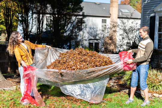 Young happy man and woman couple homeowner in garden front yard backyard raking collecting dry autumn foliage oak leaves in fall winter spring gardening housework