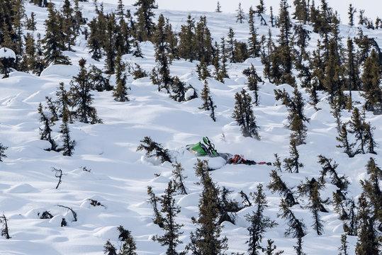 Rider on snowmachine riding Arctic Cat Sled