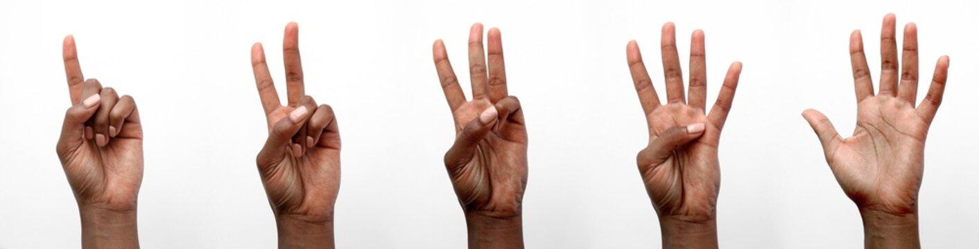 Black African female hand gesturing numbers