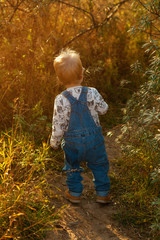 Picture of a little boy in a overalls