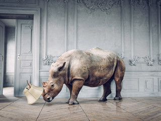 Foto op Canvas Neushoorn wild rhino in the luxury room