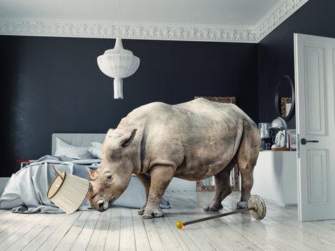 wild rhino in the luxury bedroom