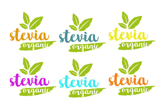 Organic stevia or sweet grass vector logo set in different colors with herbal leaves