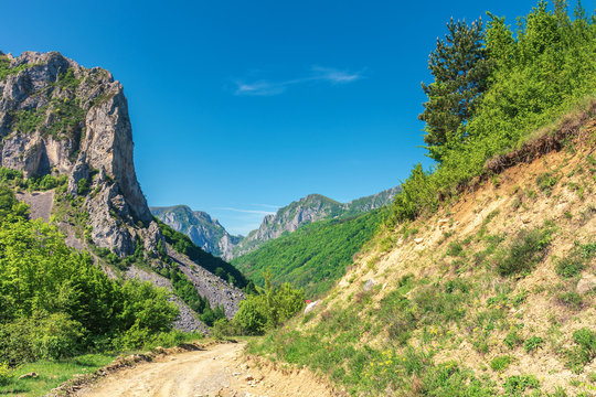 springtime in alba country, romania. wonderful sunny day in mountainous countryside. road in to the canyon with hanging cliffs under the clear blue sky