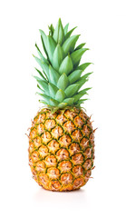 Wall Mural - single ripe pineapple isolated on white background