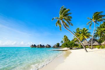 Obraz Strandurlaub auf einer tropischen Insel in der Südsee - fototapety do salonu