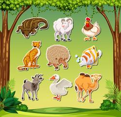 Set of animal sticker