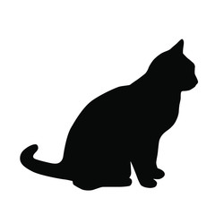 Vector silhouette of the cat  sitting,  black color, isolated on white background