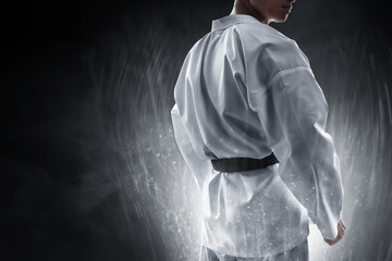 Martial arts fighter Wall mural