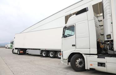 camión blanco frigorífico alimentación 4M0A9864-as19