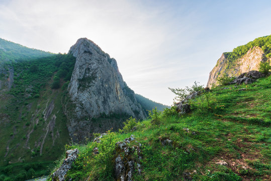 morning in the Valisoara gorge, romania. wonderful forenoon in the canyon. grassy slopes, rocks and cliff around.