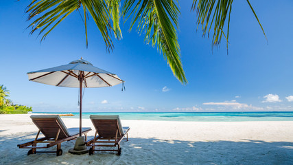 Fototapeta Perfect island beach, luxury resort or hotel scenery, wonderful sea view and palm leaf. Tropical landscape for luxurious travel and vacation holiday background