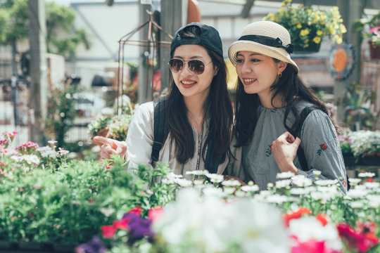 two beautiful Asian women buying flowers happily from the flower shop. Available in a variety of colors. group of young girls roommates talking discussing about plant decorated house together outdoor