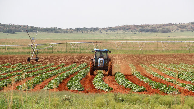 Farming in the Nortwest, South Africa