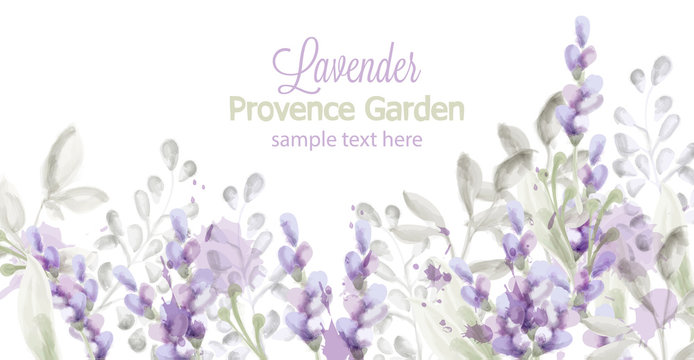 Lavender card Vector watercolor. Provence flowers banner backgrounds
