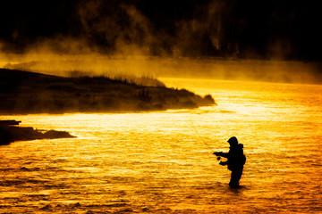 Silhouette of Man Flyfishing Fishing in River Golden Sunlight early morning fisherman yellowstone river