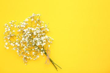 White gypsophila flowers on yellow background
