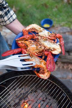 Roast lobster on plate