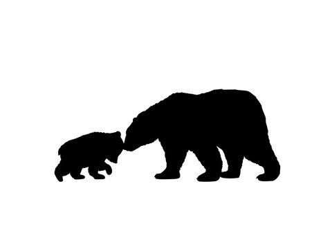 Bear family black silhouette animals. Vector Illustrator.