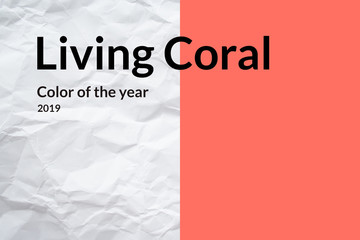 Crumpled white paper on left side and trendy living coral color on right side with inscription «color of the year 2019»