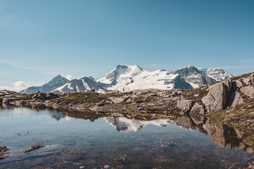 Mount Athabasca seen from Wilcox Pass, Alberta, Canada