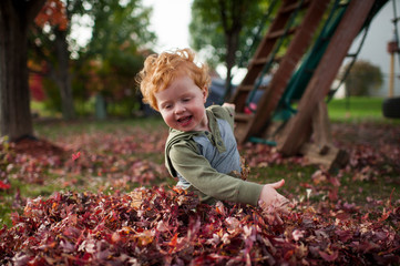 Joyful toddler boy plays in pile of leaves in backyard at home