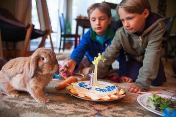 Brothers celebrating their pet's birthday