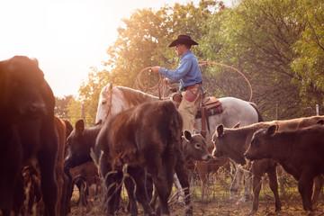 Cowboy Ranching Wall mural