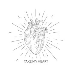 Take My Heart Quote, Human Heart Anatomical Sketch, Monochrome Hand Drawn Vector Illustration