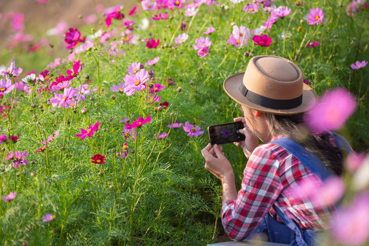The girl is taking pictures of flowers with a mobile camera.