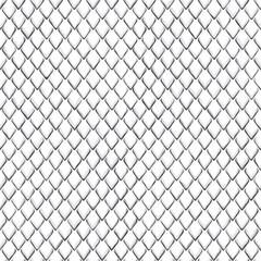 Snake Skin Black and White Seamless Pattern